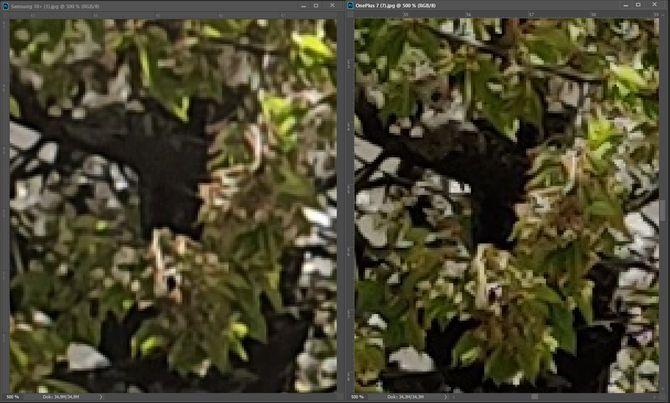 Sammenligning av kameraene på Samsung Galaxy S10+ og Oneplus 7 Pro