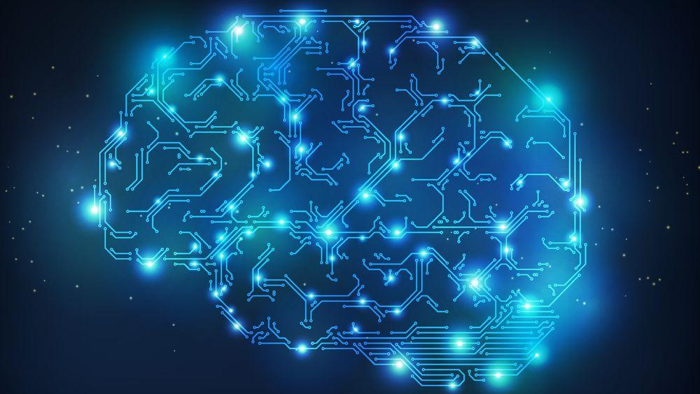 Dansk databrikke skal trene nytt hjernevev til å kurere epilepsi