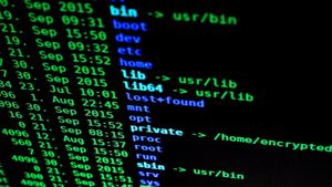 code-codes-coding-207580.300x169.jpg