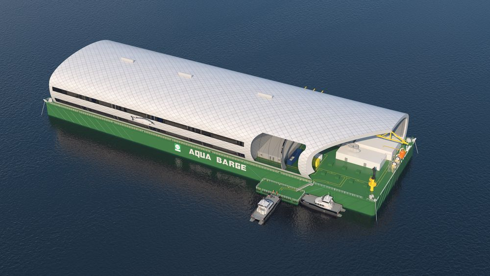 Aqua Barge-konseptet er en 195 meter lang lekter med oppdrettsanlegg om bord.