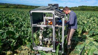 Martin utviklet en robot som plukker frukt og grønnsaker