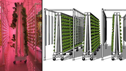 Datamaskiner styrer hver minste detalj - setter fart i loddrett plantedyrking
