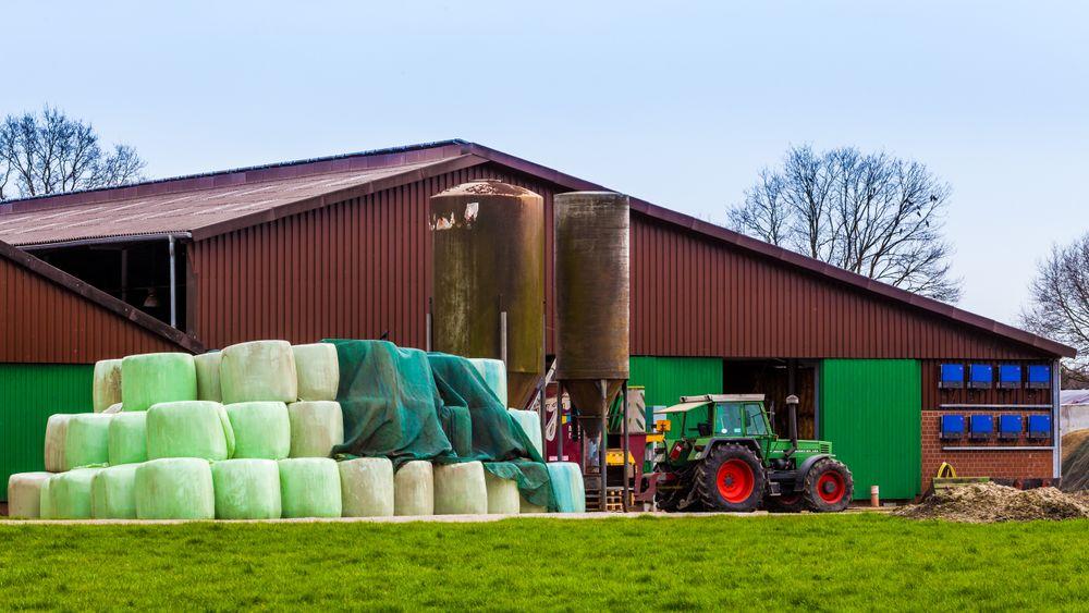 Søren Olsens landbrukseiendom ved Slagelse er et av de stedene som har hatt besøk av Esben Larsen fra DTU, fordi dyrene oppførte seg merkelig. Illustrasjonsbilde.