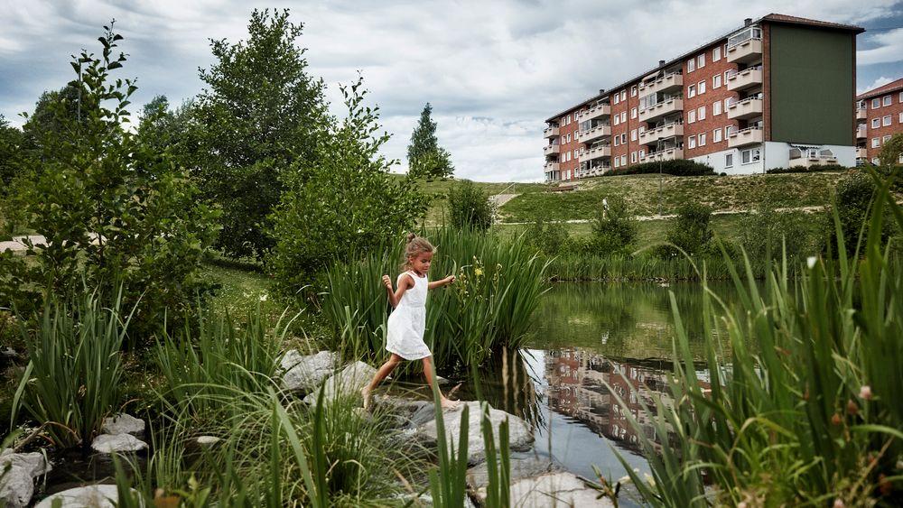 Prosjektet Bjerkedalen park, et ledd i åpningen av Hovinbekken fra marka til fjorden, vant blant annet Oslo bys arkitekturpris i 2015. Prosjektet er et godt eksempel på hvordan dammer naturlig kan håndtere overvann i byene våre.