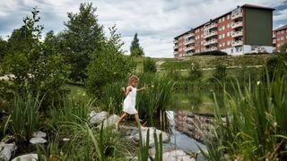 Asfaltjungel koster Norge millioner når det regner – løsningen er både billig og effektiv