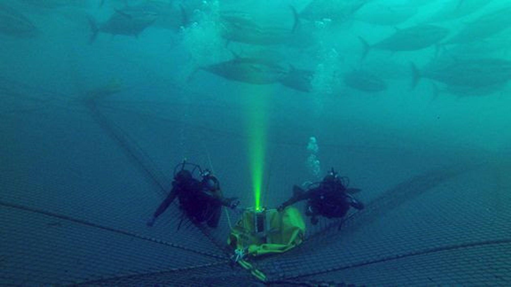 Her er Utofia-kameraet i grumsete farvann.