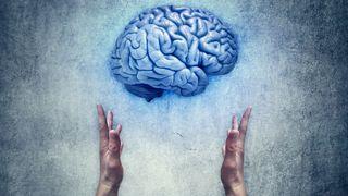 Utviklet nye verktøy for å forstå hjernen enda bedre