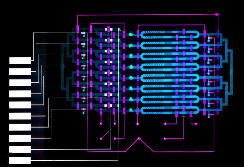 Forskere ved MIT har utviklet en sensor som bruker mikrofluid-teknologi til tidlig å oppdage blodforgiftning hos pasienter.