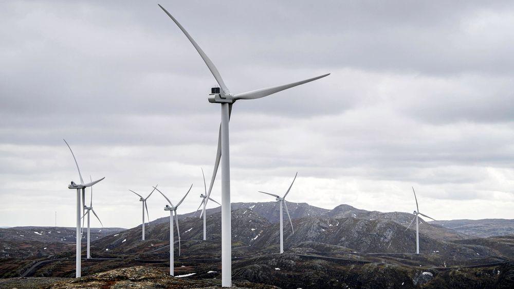 Varsom arealplanlegging og god plassering av vindparker til lands og til vanns kan redusere negative effekter og konflikter innen natur, dyreliv og næringslivsinteresser, skriver artikkelforfatterne. Bildet er fra Roan vindpark.
