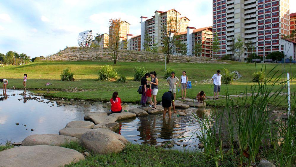Bihan-ang Mo Kio Park i Singapore, hvor Rambøll har hjulpet til med klimasikringen – og tatt høyde for økt risiko for mygg og andre uhumskheter.