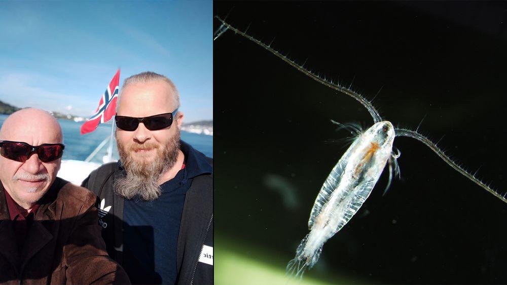 Kåre Mikalsen (t. v.) og Bjørnar Nilsen har søkt om å fiske hoppekrepsen raudåte med supplyskip.