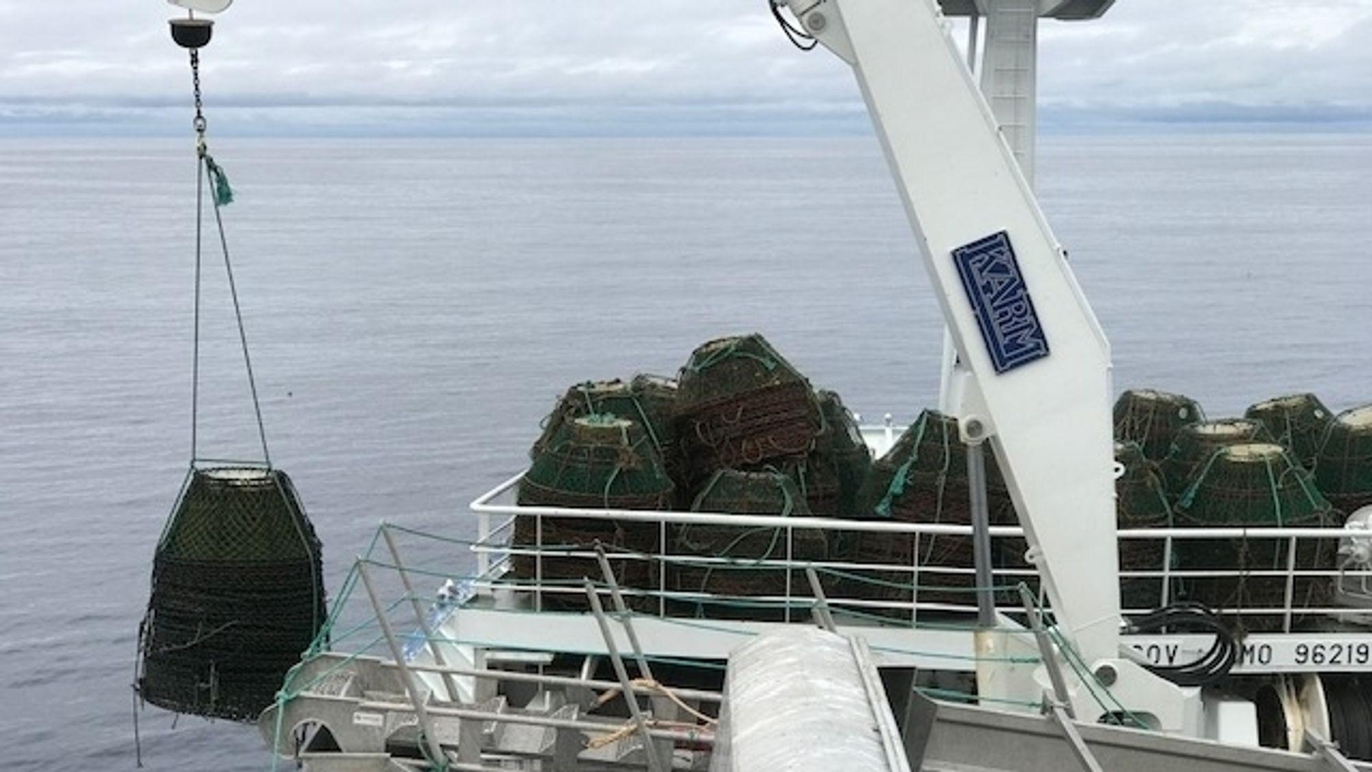 Fiskeridirektoratet har hentet opp tapte teiner og tau fra Barentshavet med leiefartøyet Liafjord.