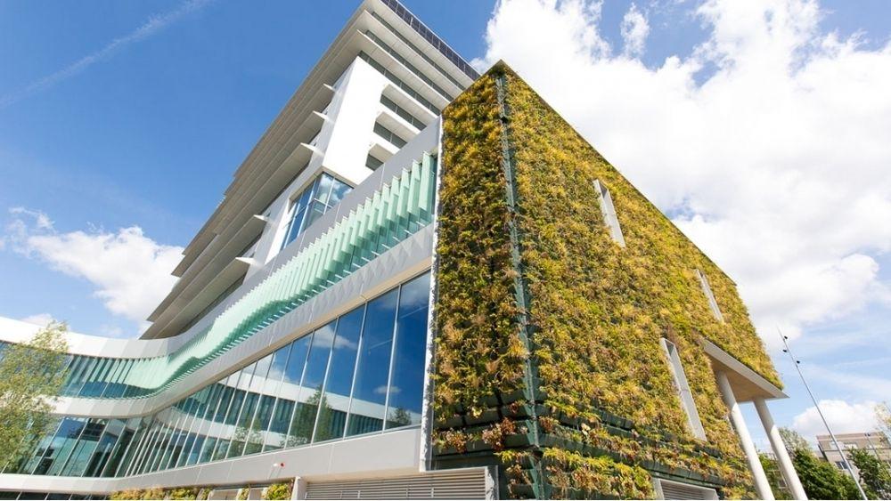 Rådhuset i Venlo er dekket med sumpplanter som renser lufta både inne og ute.