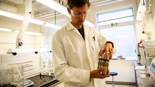 Vil trykkoke frem kunstige bier for å sikre pollinering i jordbruket