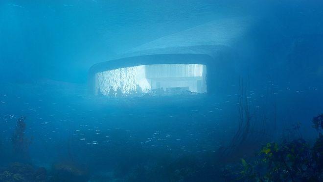 Gründere vil ha yrende liv utenfor undervanns-restauranten. Ber om fiskeforbud