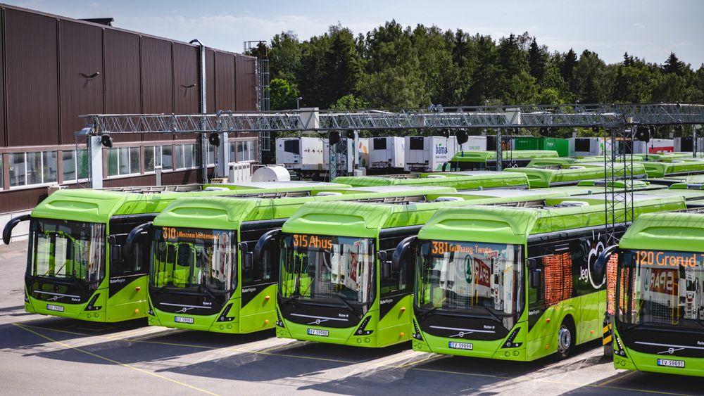 Ruter har 17 busser fra Volvo, som bruker kobolt i sine batterier.