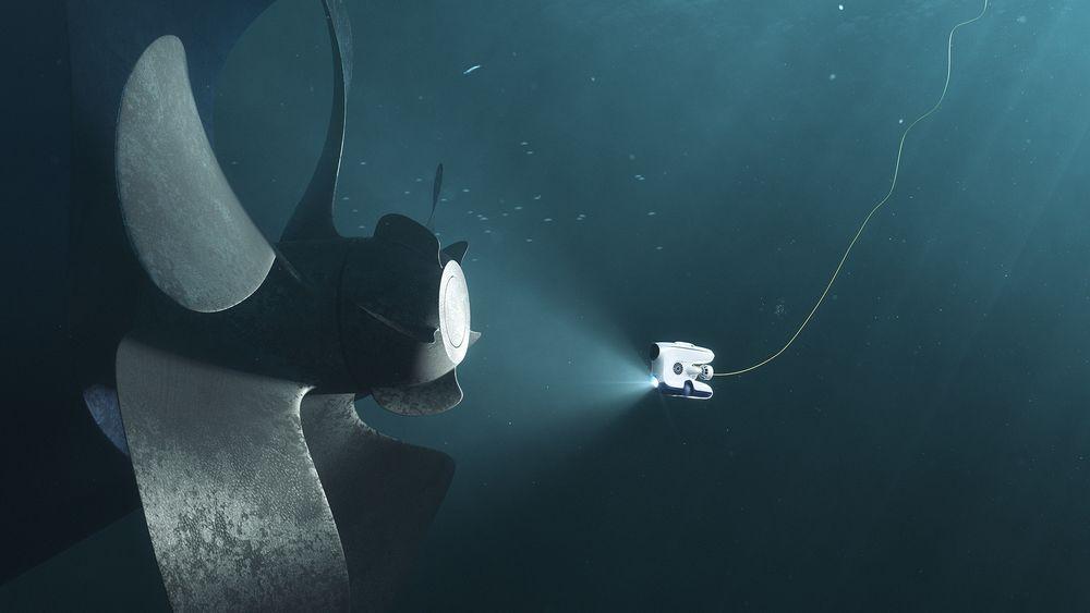 Blueye Robotics er blant de nominerte til Norwegian Tech Awards i kategorien maritim.