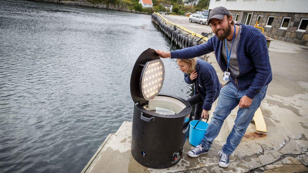 Kim Halvorsen og Tonje Knutsen Sørdalen tester fotoboks for fisk.