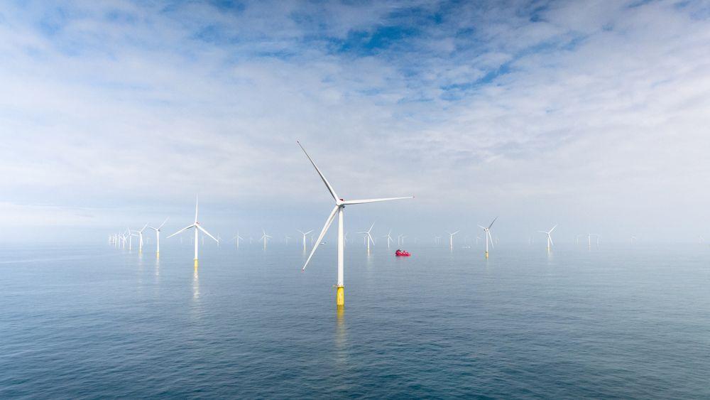 Havforskningsinstituttet fraråder bygging av havvindmøller utenfor Hammerfest. Her et bilde av Equinors Dudgeon Offshore Wind Farm i Storbritannia.