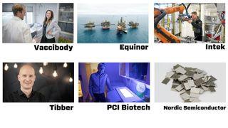 Gi din stemme: Hvilket av disse selskapene bør vinne teknologiprisen i år?