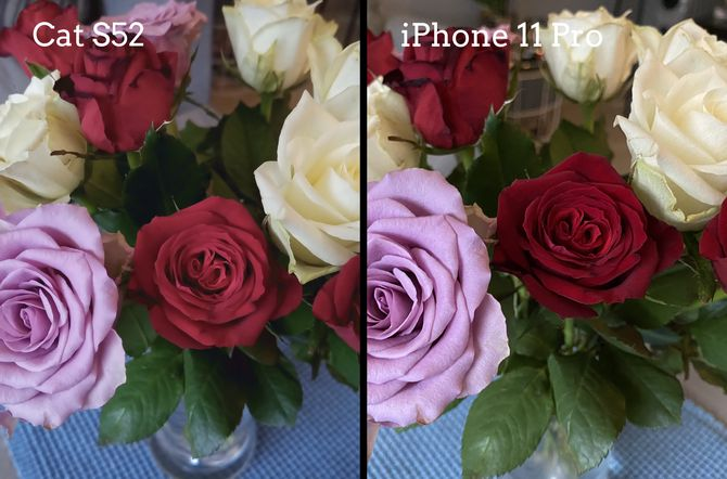Cat S52 tar ganske gode bilder, selv om bildene tatt med den dyrere toppmodellen iPhone 11 Pro til høyre blir en del skarpere og mer detaljerte.