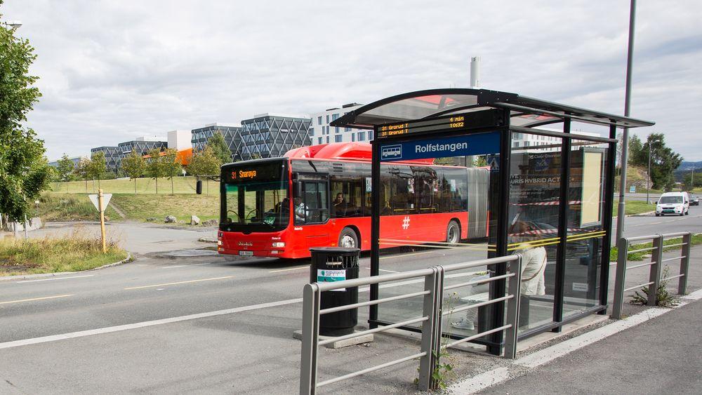 Busser over hele landet kan gå tilbake til å kjøre på fossil autodiesel etter at regjeringens forslag om å forsøke å redusere bruken av palmeoljebasert drivstoff slår ugunstig ut også for dem som ikke bruker slik olje i biodrivstoffet.