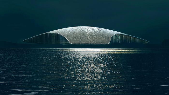 The Whale Dorte Mandrup hval observasjonssenter Andøy Andsnes museum opplevelsessenter turisme