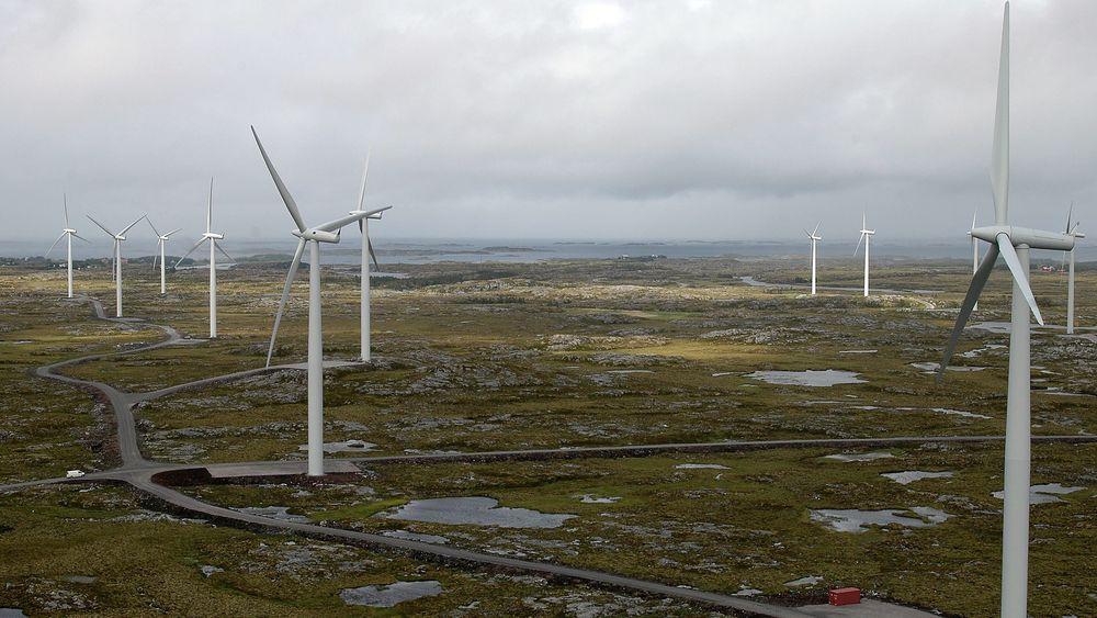 Alle som har fått tillatelse til å bygge ut vindkraft i Norge har det travelt. NVE gir ingen utsettelser dersom kraftverket ikke er i drift innen utgangen av 2021. Bildet er fra vindparken på Smøla.