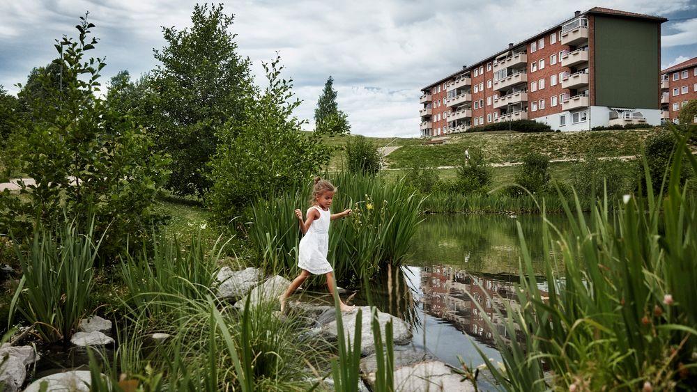 Prosjektet Bjerkedalen park, et ledd i åpningen av Hovinbekken fra marka til fjorden, vant Oslo bys arkitekturpris i 2015. Prosjektet er et godt eksempel på hvordan dammer naturlig kan håndtere overvann i byene våre.