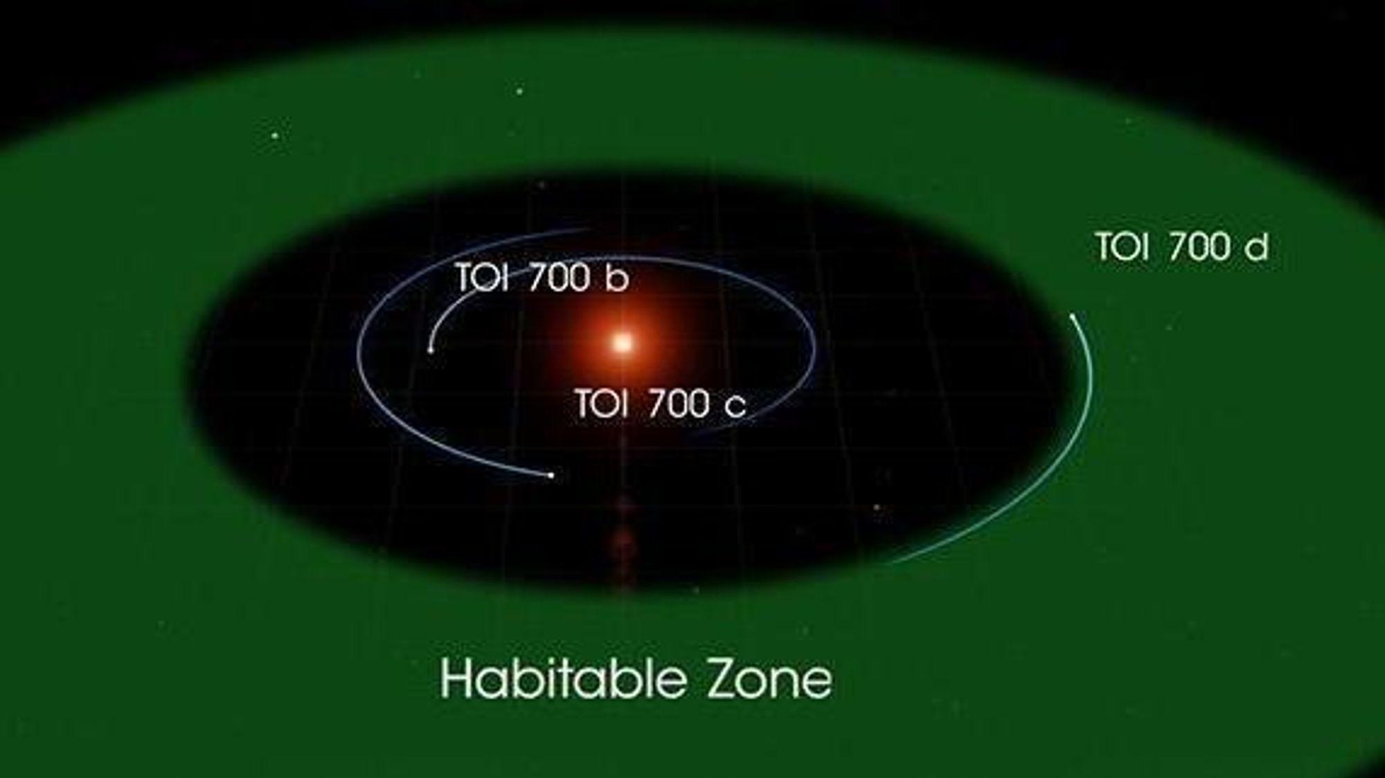 Planeten TOI 700 d er på størrelse med jorda og ligger i beboelig avstand fra sin stjerne.