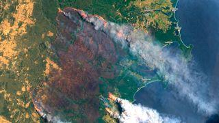 12 år gammel klimarapport: I 2020 begynner massive skogbranner i Australia