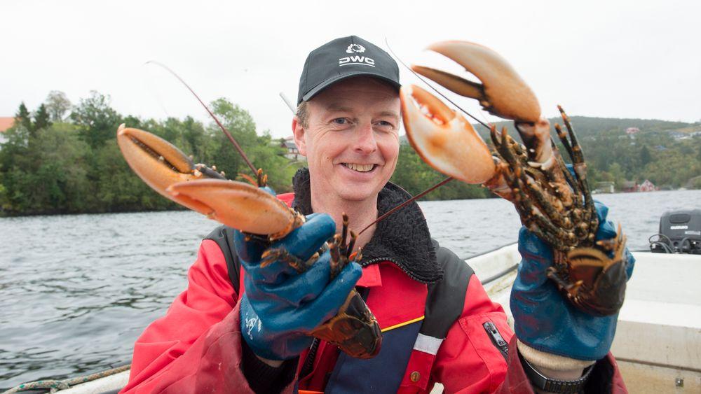 Terje Søviknes eide en fiskebåt og tjente millioner på å fiske leppefisk til oppdrettsnæringen, ved siden av studiene i akvakultur. Han er fornøyd med fagvalget. Her fisker han hummer i Lysefjorden.