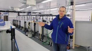 Frykter at han skal skape superbakterie: Oppdrettsnestor vurderer å kutte ned på rensing av vann