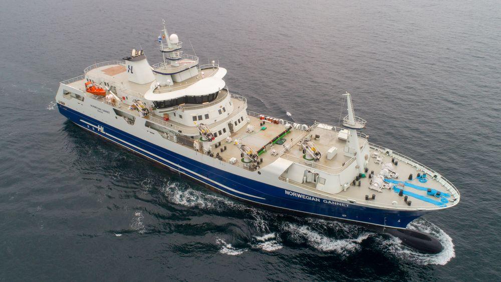 Norwegian Gannet fraktet mindre en en tredjedel av laksen den hadde budsjettert med i løpet av den første perioden i drift.