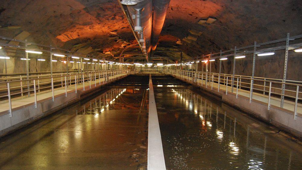Bekkelaget renseanlegg i Oslo er et av landets største renseanlegg for kloakk. Kloakken her kan bli en verdifull kilde til fosfor i fremtiden.
