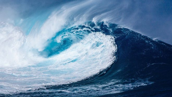 Fiskebestander migrerer nordover og at havet blir surere. Konsekvensene kjenner vi ikke rekkevidden av i dag, påpeker innsenderne