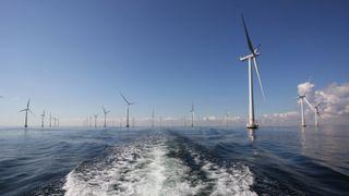 Siemens-sjef tror på samme prisfall på elektrolyse som for solceller