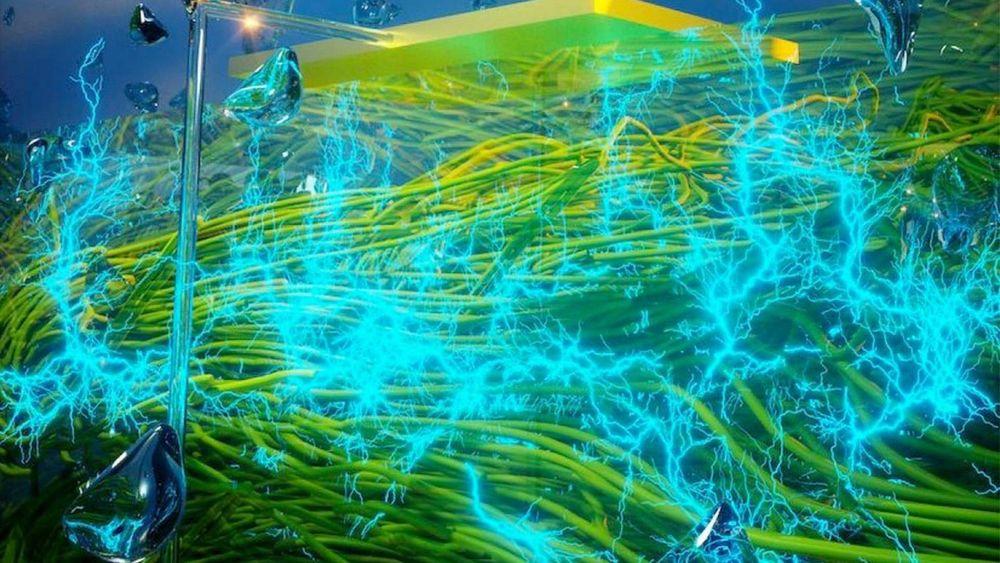 Proteintråder i nanoskala lages av mikroben Geobacter sulfurreducens.