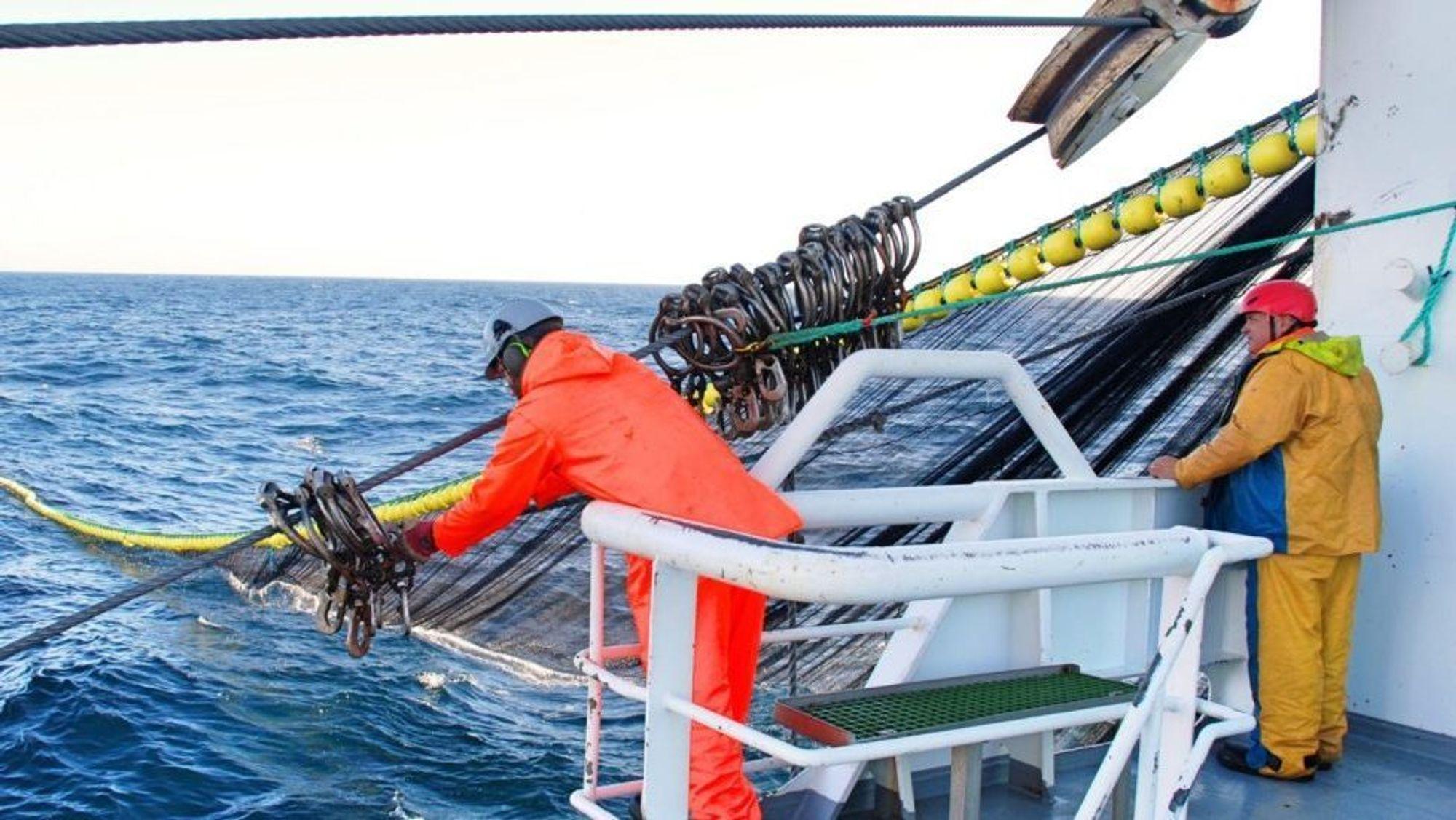 Villfanget fisk har blitt mer klimavennlig de siste årene. Det gjelder ikke for oppdrettslaksen.