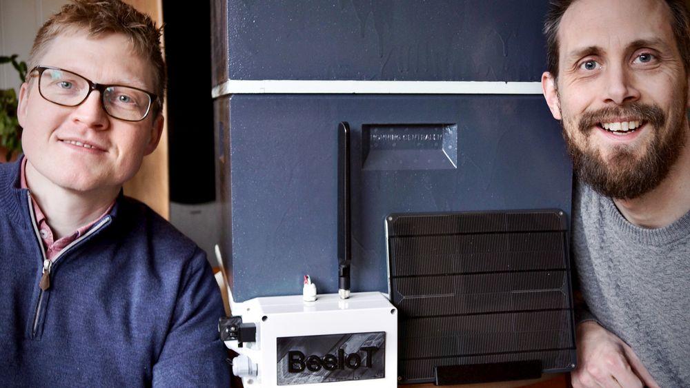 To bee or not to bee: Kim Bredesen (t.v.) og Tom Erik Støwer vil bruke IoT-teknologi for å redde biene og gjøre produksjonen av honning enkere og mer bærekraftig.