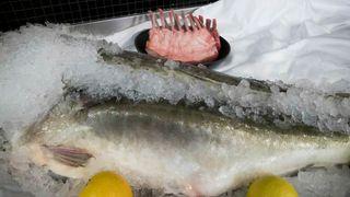 Frykter store koronakonsekvenser for norsk sjømatnæring