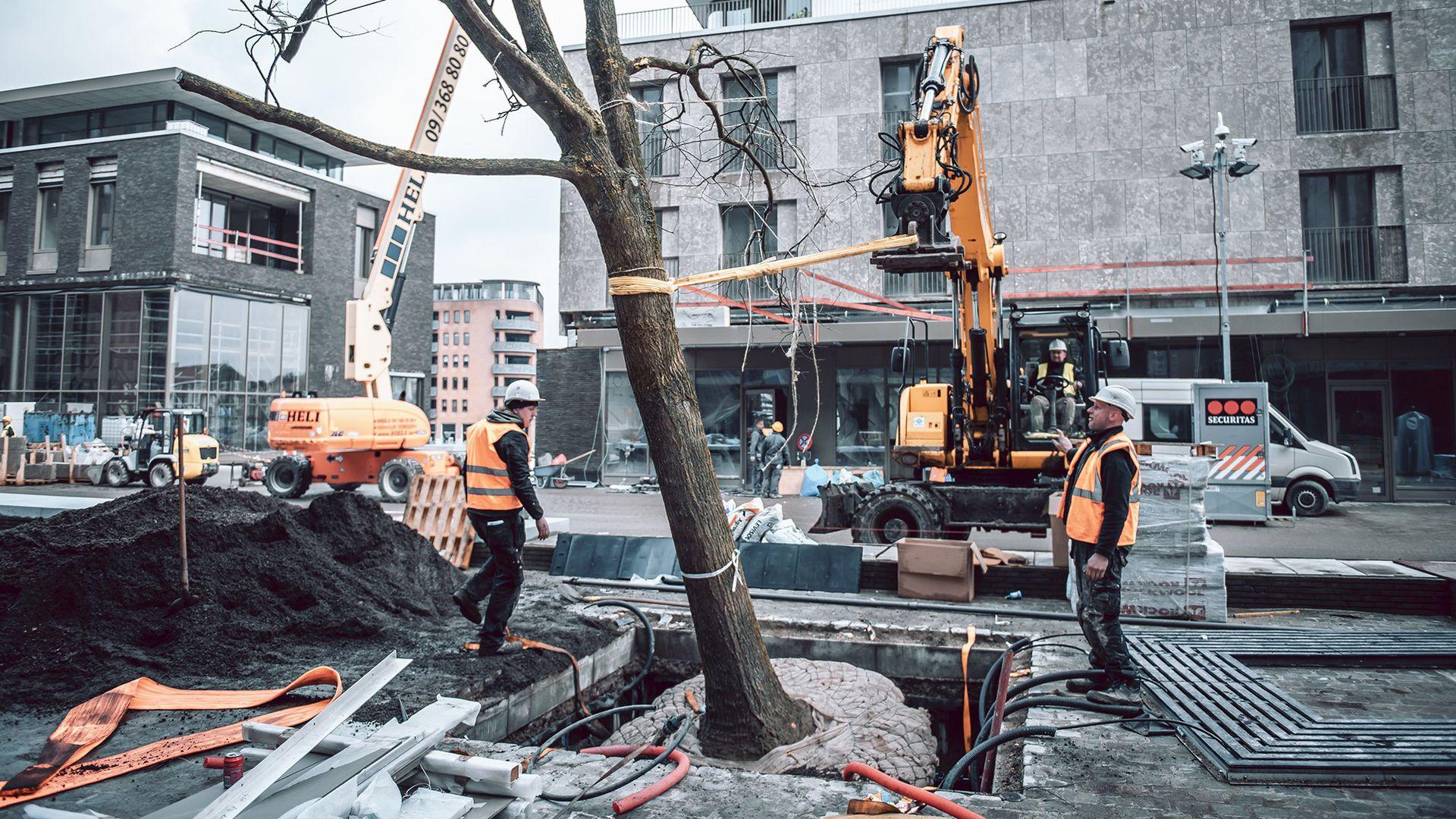 Wavin har laget en løsning som gjør at trærnes røtter får utvikle seg, selv når massene rundt er hardt komprimert.