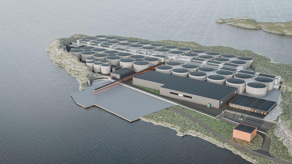 Fullskalaanlegget skal kunne produsere 36.000 tonn laks. Nå har Salmon Evolution hentet kapital.