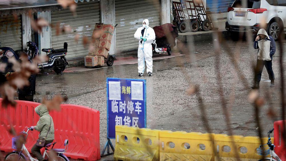 """Sannsynligvis kom smitten fra et dyremarked i den kinesiske byen Wuhan, men det er usikkert hvilket dyr som overførte viruset til mennesker. Bildet er fra et såkalt """"våtmarked"""", som ble stengt av myndighetene i Wuhan i januar."""