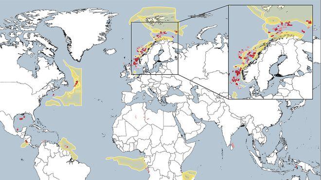 Her opererer Equinor i sårbare områder. Det håper WWF og Greenpeace å gjøre noe med på selskapets generalforsamling i dag