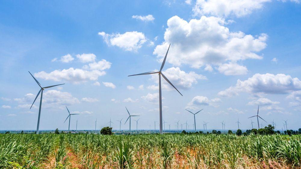 Eldre danske vindturbiner blir til dels demontert og solgt videre på bruktmarkedet, gjerne til Irland og Storbritannia, og erstattet med nye og langt mer effektive turbiner.