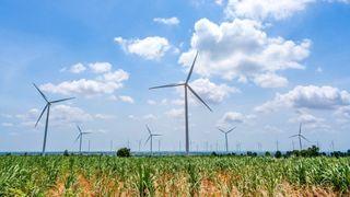 Demonterer og eksporterer brukbare vindturbiner – vil heller sette opp nye