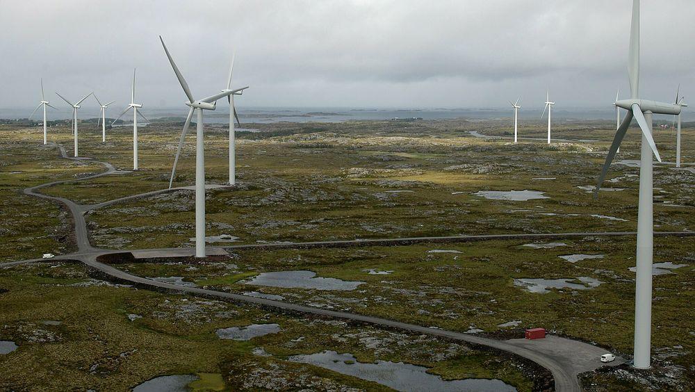 Du har kanskje hørt om at vindkraft fører til redusert biologisk mangfold? Vel, det er ikke så sant som det høres ut, skriver artikkelforfatteren. På Smøla har vindmøller på 13 år tatt livet av rundt hundre ikke-utrydningstruede havørn. Det finnes minst 8 000 havørn i Norge. Havørn er kategorisert som «livskraftig», i samme selskap som mygg, ku, kråke og kjøttmeis.