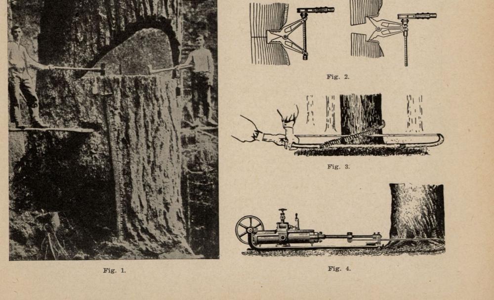 Hvordan kommer fremtidens skogbruk til å se ut? Det var spørsmålet som ble stilt i Teknisk Ukeblad i 1939
