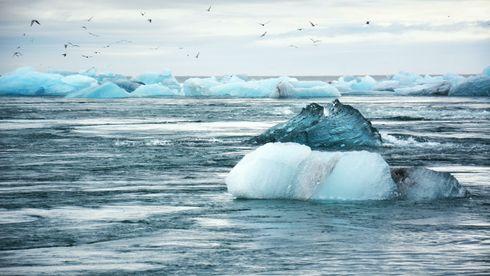 Klimakrisen har en alvorlighetsgrad mangfoldige ganger større enn dagens pandemi. Summene vi kan spare på å høre på vitenskapen nå, fremfor senere, er tilnærmet uendelige, mener innsender